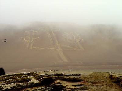 Paracas has its own version of the Nazca lines. There were many theories as to its origin and meaning. We like the theory that the creators were celebrating some hallucinogenic plant. Why would anyone push around all of that dirt if they weren't on drugs?!