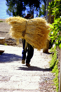 Everything is done by man power. Other than a little bit of tourism, the islanders are mainly farmers. They grow their own food and form their own mud bricks for the structures. They work very hard from about the time they can walk.