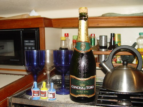 We prepared for the crossing of the equator and our initiation into the legion of shellbacks a couple miles north of the equator. The chilled champagne, kiddie fireworks and 3 wine glasses were set out.